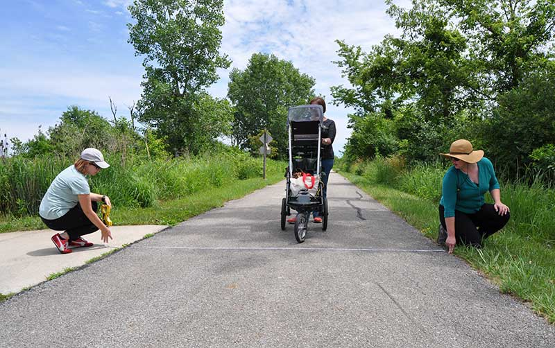 Photo for: Forest Preserve Team Takes on Trail Assessment
