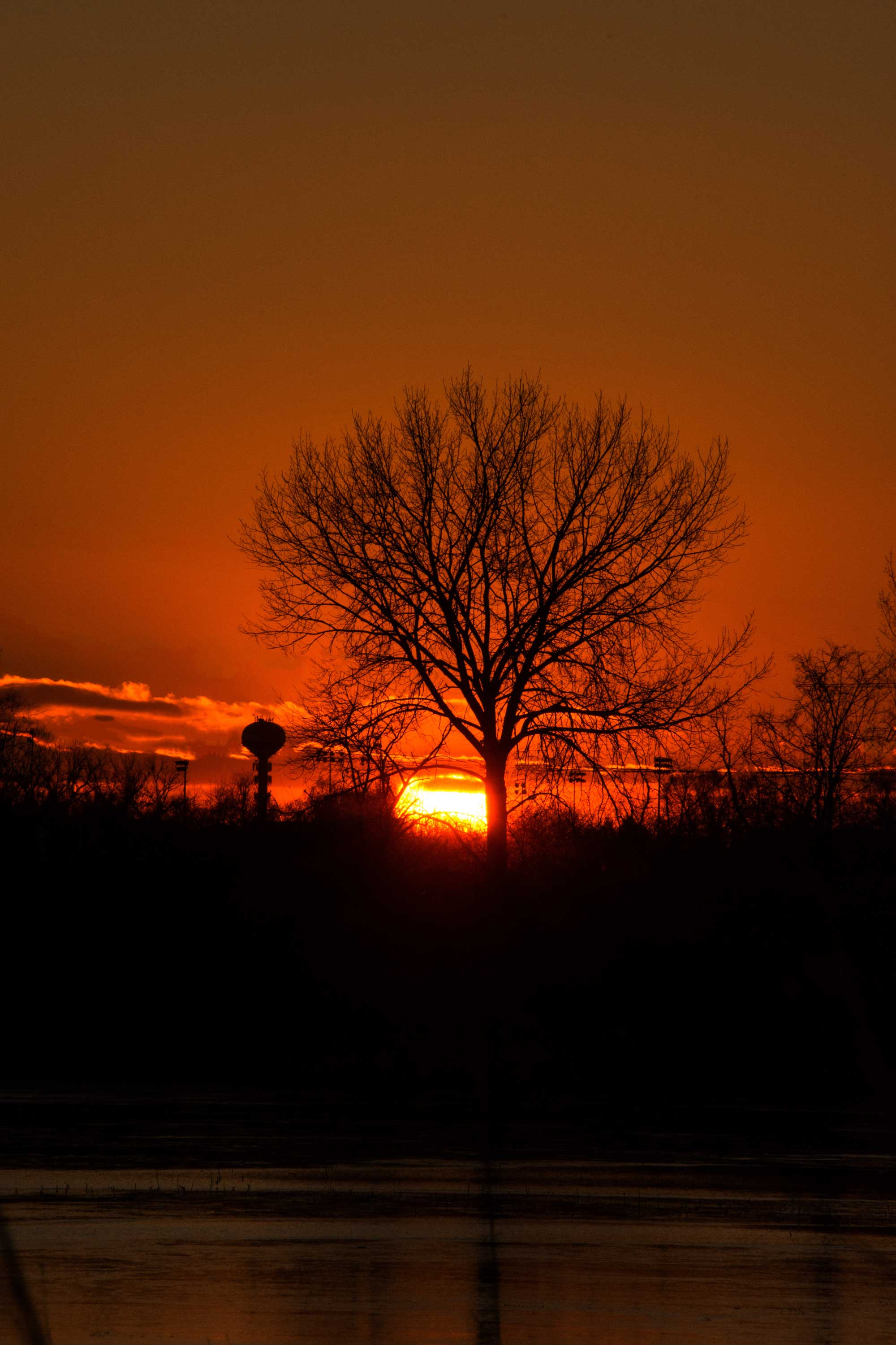 Photo for: Naperville Woman's Sunset Shot Shines with December Photo Contest Win