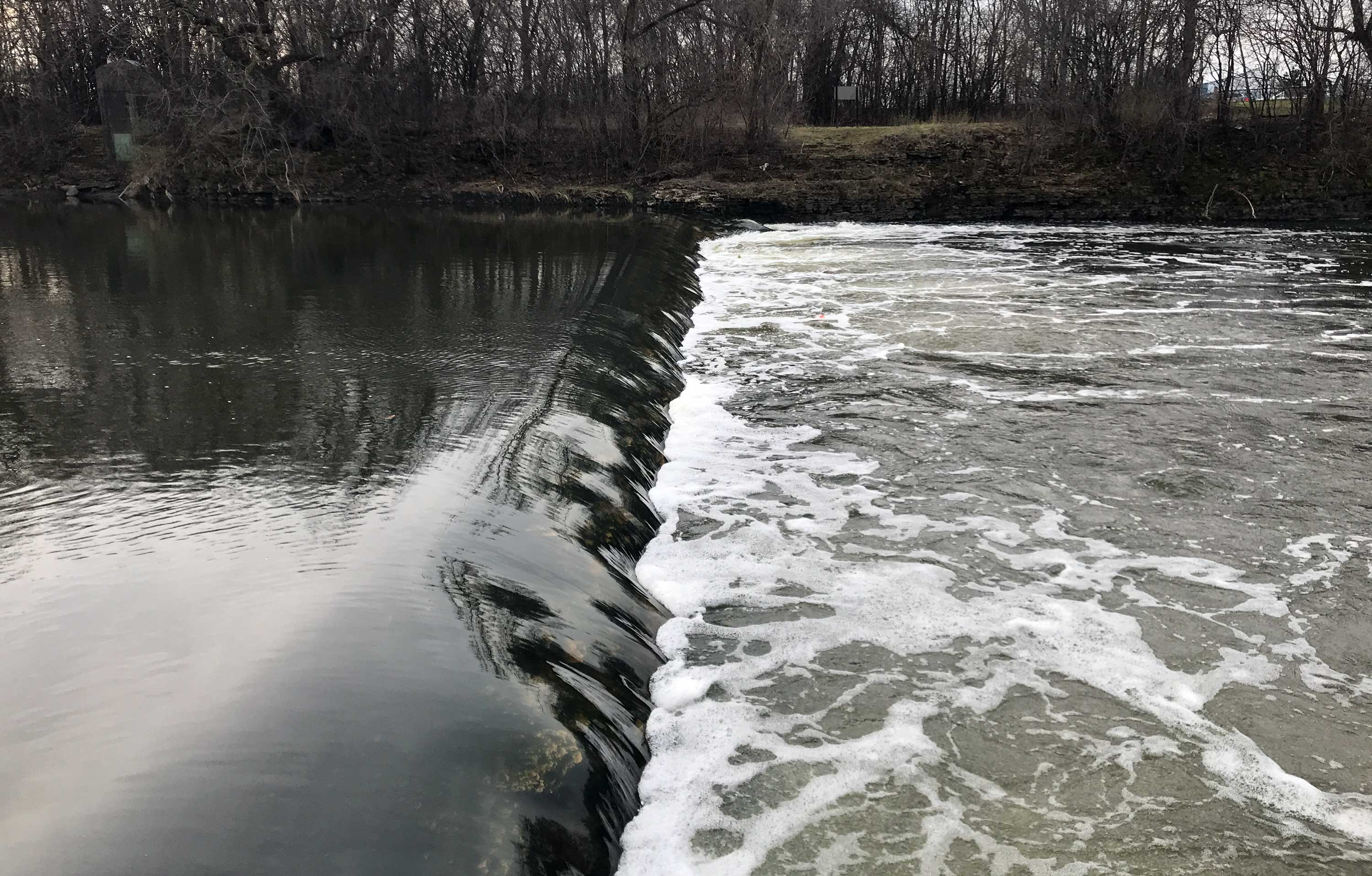Photo for: Board Hires Firm to Create Engineering Plan for Hammel Woods Dam Removal