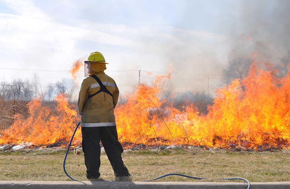 Photo for: Prescribed burning season approaches