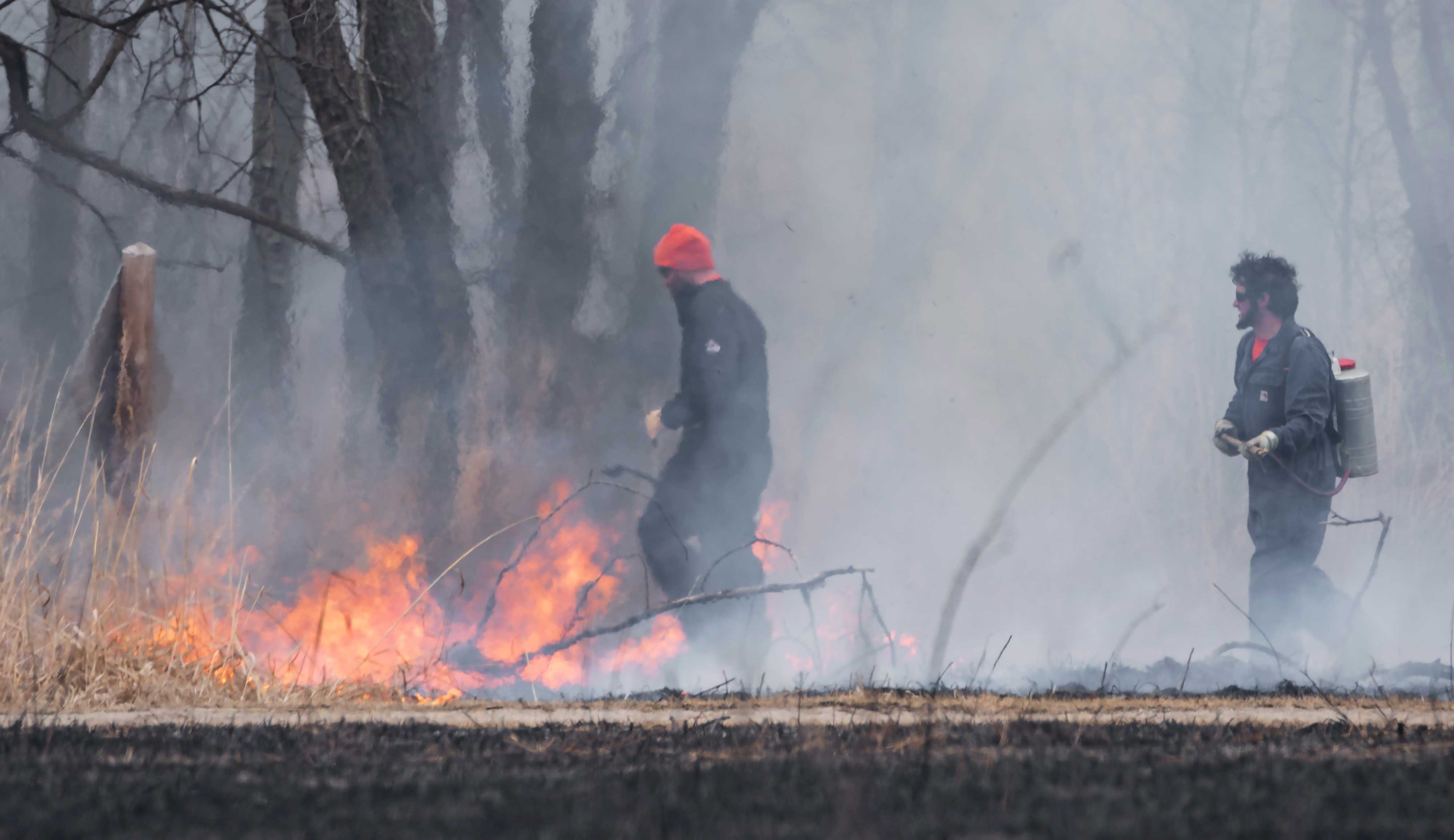 Photo for: Prescribed Burn Season: Here